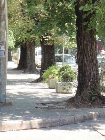 El Tranquilo:                   Street