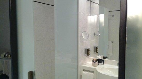 Hotel Allegra:                   Functional bathroom