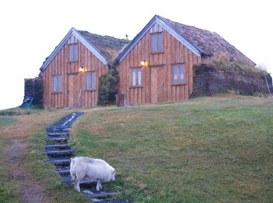 Fjalladyrd:                   Other cabins