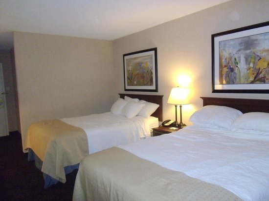 Holiday Inn Buffalo International Airport:                   Comfy Beds