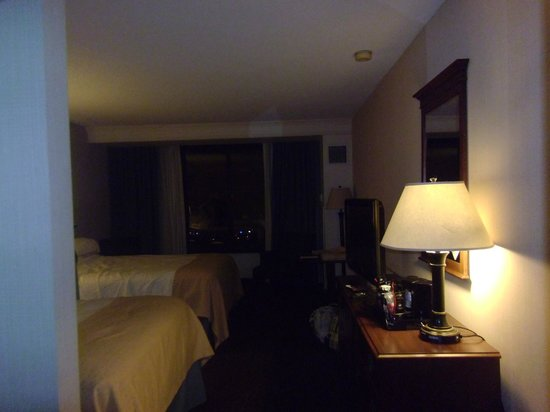 Holiday Inn Buffalo International Airport:                   View of the room
