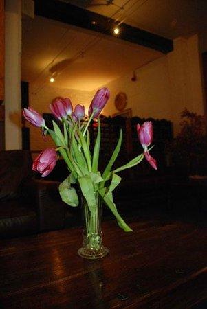 Qarma: random flowers