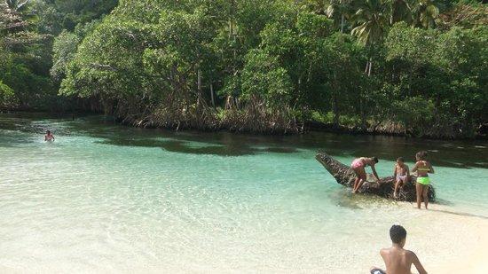 Luxury Bahia Principe Samana Don Pablo Collection :                   playa ricon