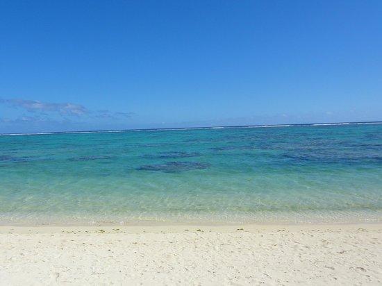 Makayla Palms:                   View                 