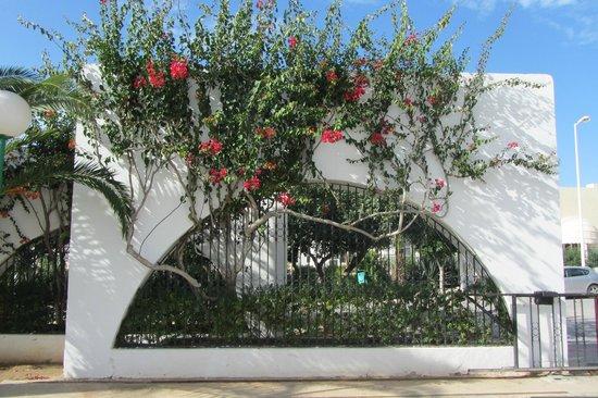 SENTIDO Aziza Beach Golf & Spa:                   Центральный въезд.
