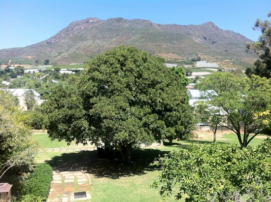 The Royal Hotel:                   View at the Kasteelberg from the room
