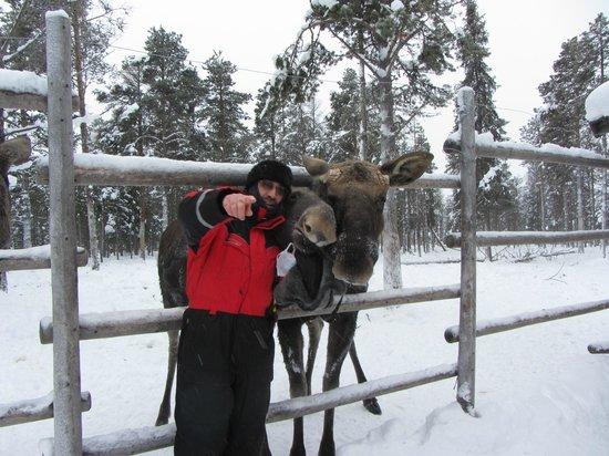 Vittangi Nya Kyrkogrd in Vittangi, Norrbottens ln - Find A