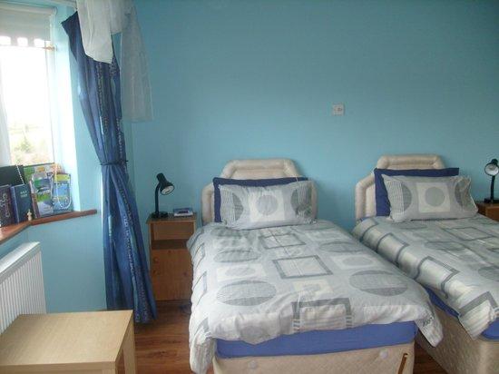 Douglasha House : Twin Room Ensuite.