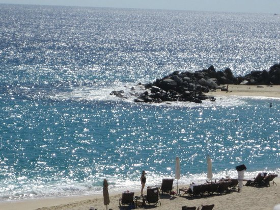 Hilton Los Cabos Beach & Golf Resort:                   Beach