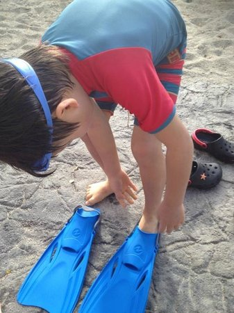 Marriott Ko Olina Beach Club:                   水遊び