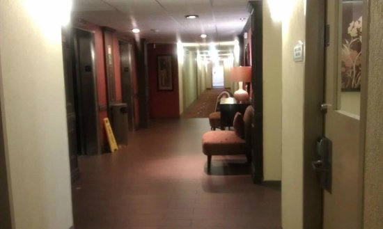 BEST WESTERN PLUS Windsor Inn: elevator lobby
