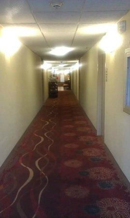 BEST WESTERN PLUS Windsor Inn: Hall leading into lobby and out to parking lot