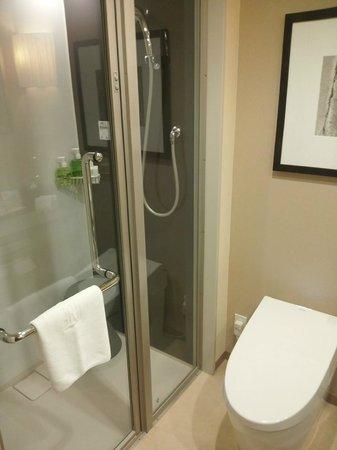 Hotel Ryumeikan Tokyo:                   多機能シャワー!
