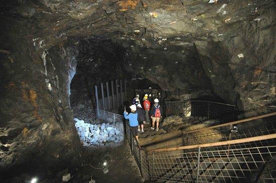 Il Parco Archeominerario di San Silvestro : Miniera del Temperino