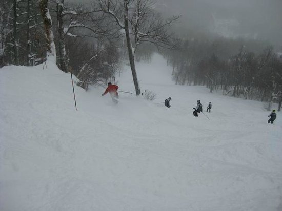 Mad River:                   MRG on a powder day is heaven!  Yep, I took em and yep, I own them!