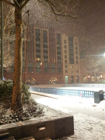 Disney's Hotel New York:                   in the snow