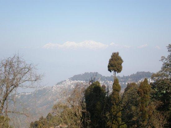 Kanchenjunga Mountain:                   white glory on blue n greens---