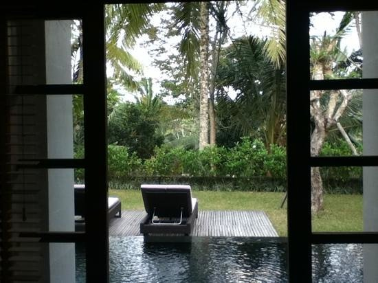 Chapung SeBali Resort and Spa:                   private pool right outside