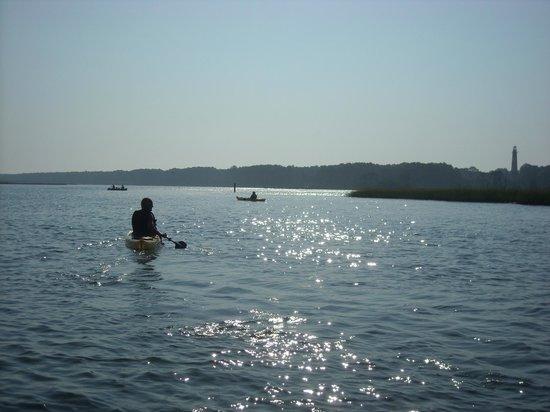Old Town Canoe And Kayak Assateague Island Tours