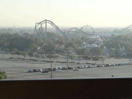 Renaissance Orlando at SeaWorld: Manta Rollercoaster