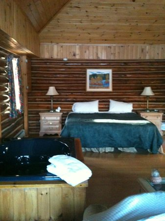 Adventure Lodge:                   Virin Island Cabin