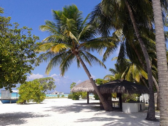 Rihiveli by Castaway Hotels & Escapes:                   zona bar