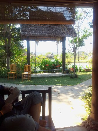 Bueng Pai Farm:                   Swing by the fish pond