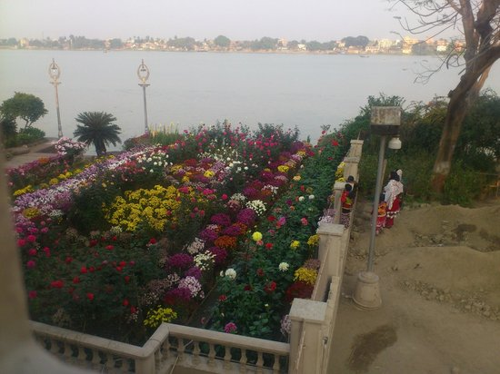 Belur Math:                   Flowers