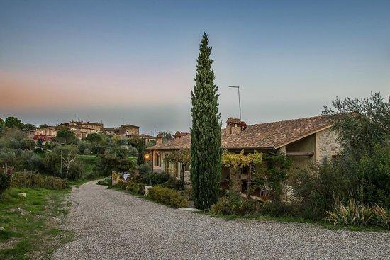 Fattoria di corsignano castelnuovo berardenga itali for Piani di fattoria ranch