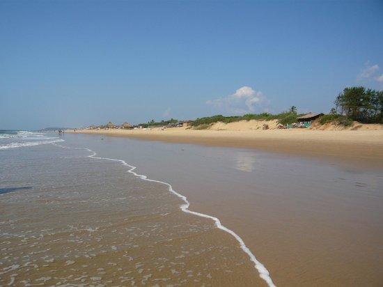 Candolim Beach:                   Condolim Beach