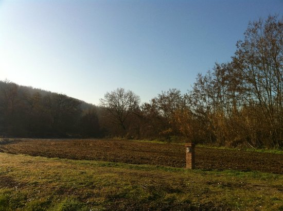 Castiglione della Valle, Italien:                   New Year's morning looking west