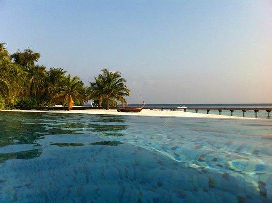Coco Bodu Hithi:                                                       piscine de l'hotel