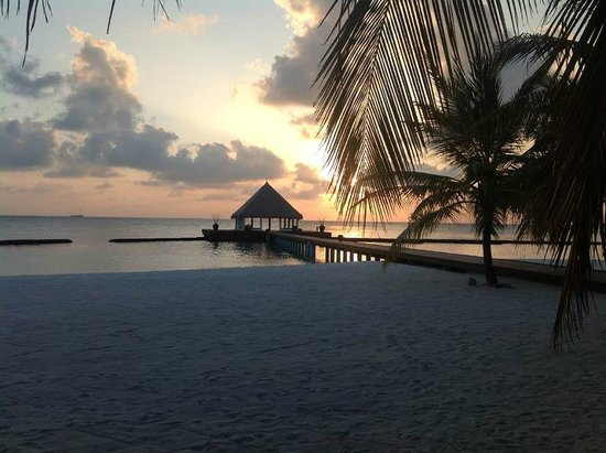 Coco Bodu Hithi:                                                       vue plage vers 19h