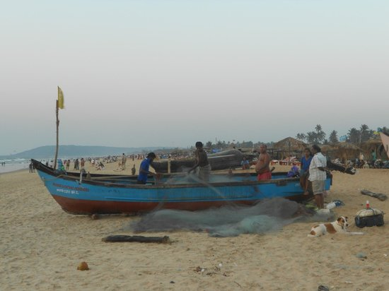 Hotel Sea Gull:                   рыбаки