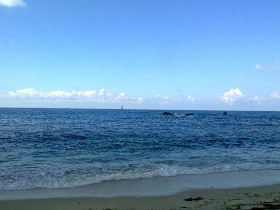 Hotel Grotticelle:                   Spiaggia di Grotticelle