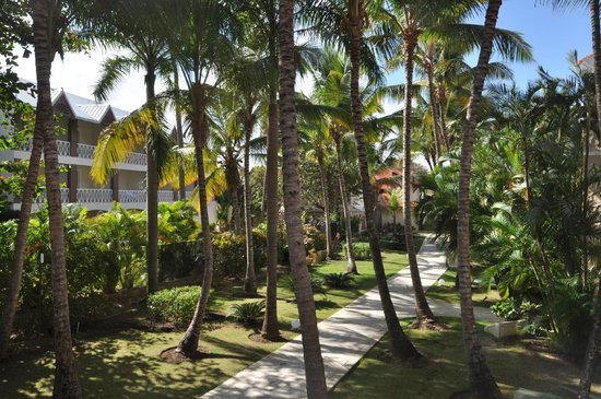 Dreams Palm Beach Punta Cana:                   Hidden grounds