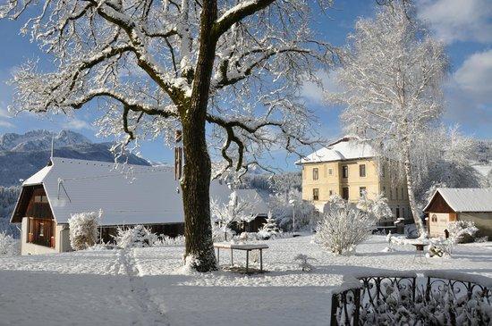 Pension Villa Blumegg: Aussicht auf die Villa Pellar