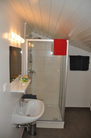 Pension Villa Blumegg: Dusche Studio