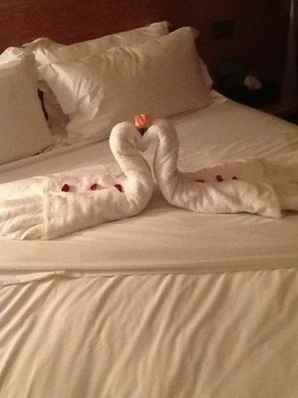 Sirayane Boutique Hotel & Spa:                   the swan that was made for us in the room