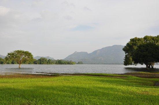 Amaya Lake:                   lago Kandalama