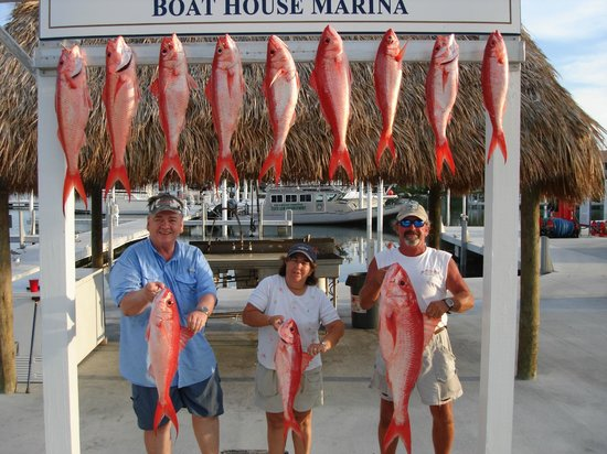 Cara Mia Fishing Charters