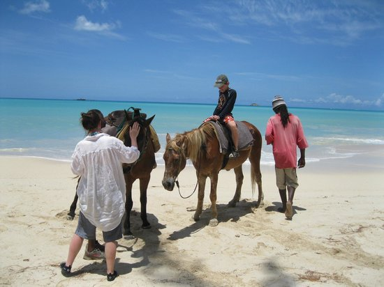 Runaway Beach: You can have a horse ride right there.