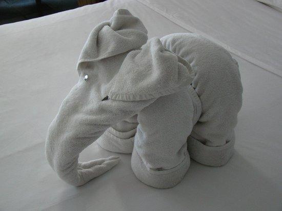 Hikka Tranz by Cinnamon:                   Arreglo con toallas