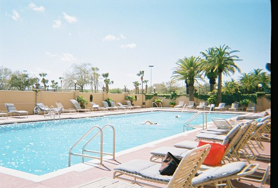 The Florida Hotel and Conference Center:                   pool
