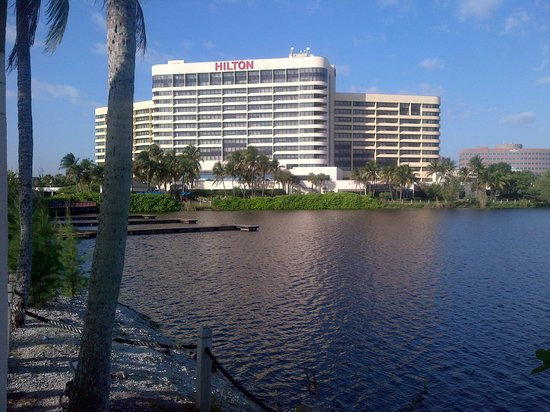Hilton Miami Airport:                   View from lakeside walk way