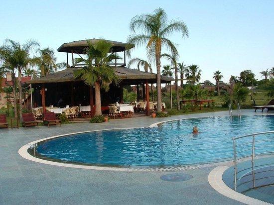 Nerissa Hotel: Swimming pool and bar