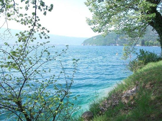 True Alpine:                   Lake