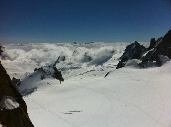 True Alpine:                   Mountains