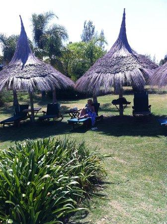 La Casa de los Limoneros:                   zona de piscina y descanso