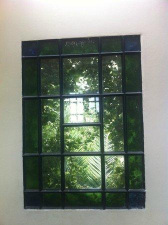 La Casa de los Limoneros:                   ventana cuadro